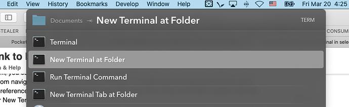 Screenshot of Safari (3-20-20, 4-25-03 PM)